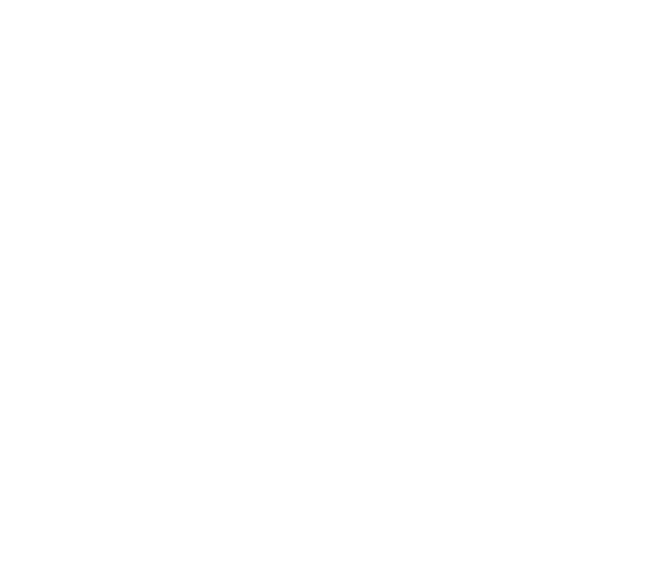 DL Radiators - Italian Premium Heating